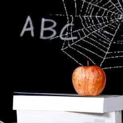cobwebs and an apple